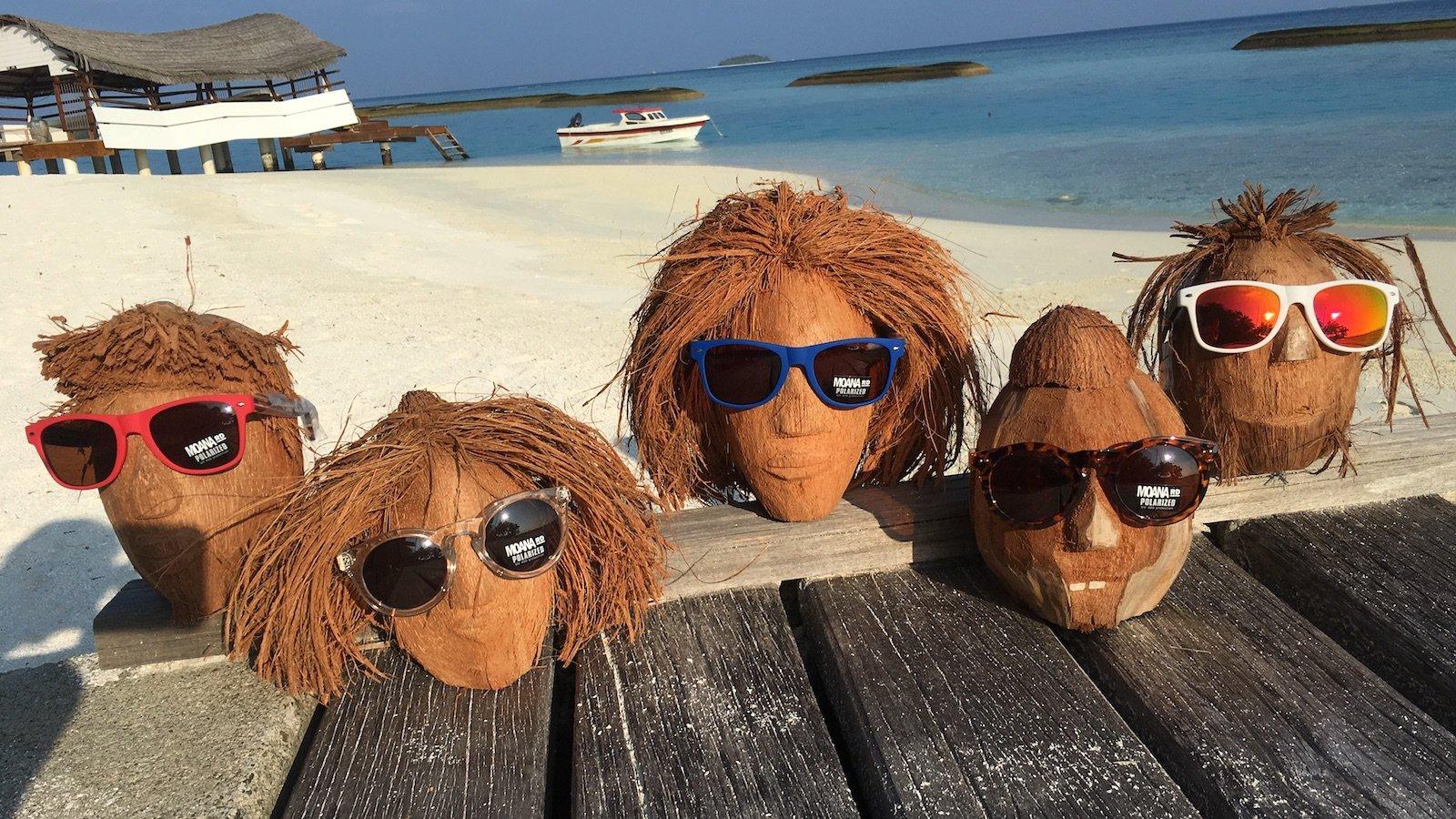 shop Moana sunglasses on 5 coconut heads