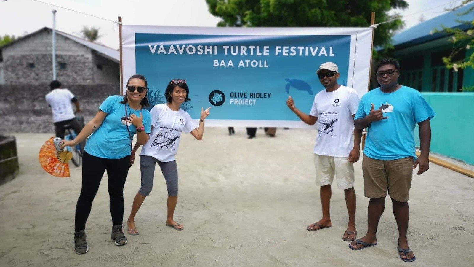 turtle festival - low season
